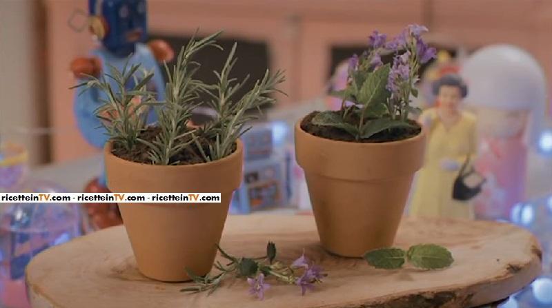 vasetti di fiori commestibili