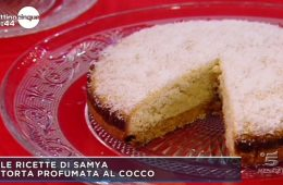 torta profumata al cocco