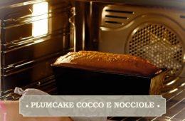 plumcake cocco e nocciole di Giustina e Enrica