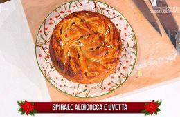 spirale albicocca e uvetta di Natalia Cattelani