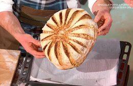 pane nazionale di Fulvio Marino